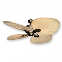 Palm Breeze II Ceiling Fan - Antique Brass