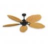 Coastal Air Ceiling Fan Oil Rubbed Bronze - 125 Arbor Blades Maple