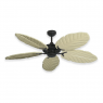 Coastal Air Ceiling Fan Oil Rubbed Bronze - 125 Arbor Blades Whitewashed