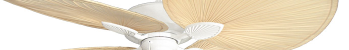 hawaiian, coastal, beach, bamboo, pam tropical ceiling fan styles